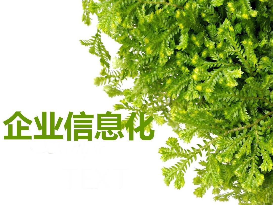 src=http___www.wendangwang.com_pic_d6dd0a13daed8035af8c5055_1-810-jpg_6-1080-0-0-1080.jpg&refer=http___www.wendangwang.jpg